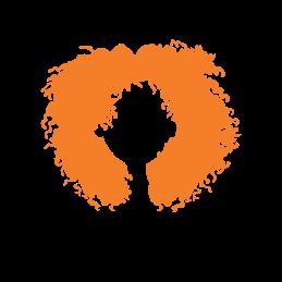 Type 4 - Coily icon