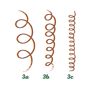 Type 3 - Curly sub classification image