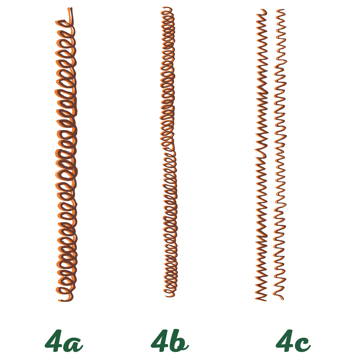 Type 4 - Coily sub classification image
